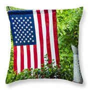 Back Porch Americana Throw Pillow by Carolyn Marshall