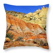 Back Roads Utah Throw Pillow