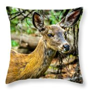 Back-tail Doe Throw Pillow