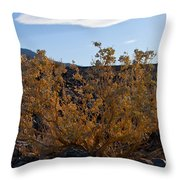 Backlit Desert Foliage Throw Pillow