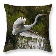 Backlit Eqret Throw Pillow