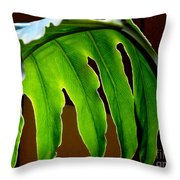 Backlit Frond Throw Pillow