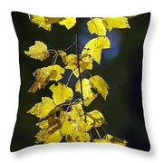 Backlit Leaves Of Autumn Throw Pillow