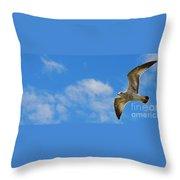 Backlit Seagull Throw Pillow