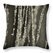 Backlit Sepia Toned Wild Grasses In Black And White Throw Pillow