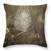 Backlit Spider Web In Sepia Tones Throw Pillow