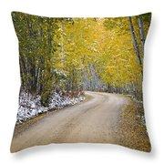 Backroads Of Autumn Throw Pillow