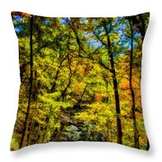 Backroads Of The Great Smoky Mountains National Park Throw Pillow