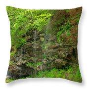 Backroads Waterfall In West Virginia Throw Pillow