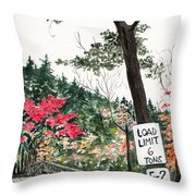 Backwoods Bridge Throw Pillow