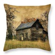 Backwoods Cabin Throw Pillow by Steve McKinzie