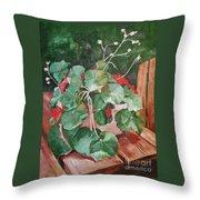 Backyard Begonia Throw Pillow