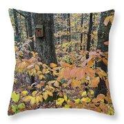 Backyard Birdhouse Throw Pillow