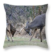 Backyard Brawl Throw Pillow