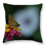 Backyard Butterfly Throw Pillow