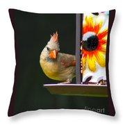Backyard Female Cardinal Throw Pillow