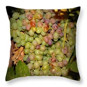 Backyard Garden Series -hidden Grape Cluster Throw Pillow