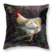 Backyard Rooster Throw Pillow