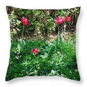 Backyard Tulips Throw Pillow