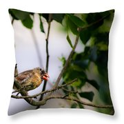 Bad Hair Day-female Northern Cardinal Throw Pillow