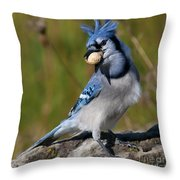Bad Hair Day.. Throw Pillow