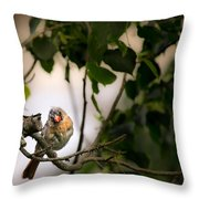 Bad Hair Day-the Rest Of The Story Throw Pillow