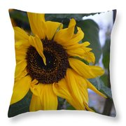 Bad Petal Day  Throw Pillow