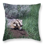 Badger In Yellowstone Throw Pillow