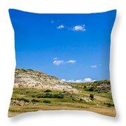 Badlands 10 Throw Pillow