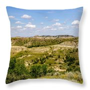 Badlands 21 Throw Pillow