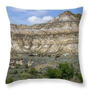 Badlands 42 Throw Pillow