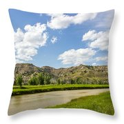 Badlands 44 Throw Pillow