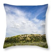 Badlands 48 Throw Pillow