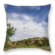 Badlands 54 Throw Pillow