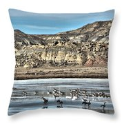Badlands Spring Thaw Throw Pillow