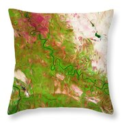 Baghdad Iraq Throw Pillow by Phill Petrovic