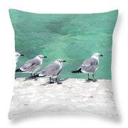 Bahama Birds Throw Pillow