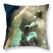 Bahama Reef Throw Pillow