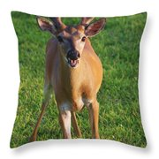 Bahhh Throw Pillow