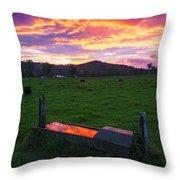 Bahrs Scrub Sunset Throw Pillow