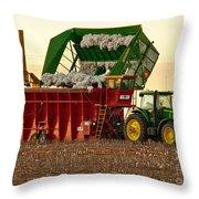 Bailing Cotton Throw Pillow