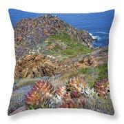 Baja California Coast Throw Pillow