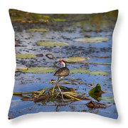 Balancing Act V5 Throw Pillow