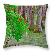 Bald Cypress And Red Buckeye Tree At Mile 122 Of Natchez Trace Parkway-mississippi Throw Pillow