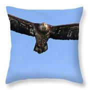Bald Eagle 1238 Throw Pillow