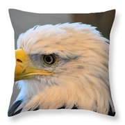 Bald Eagle 7615 Throw Pillow