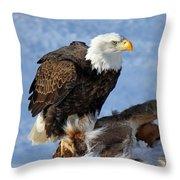 Bald Eagle And Carcass Throw Pillow