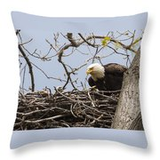 Bald Eagle And Eaglet Throw Pillow