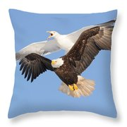 Bald Eagle And Greater Black-backed Gull Throw Pillow