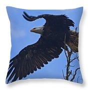Bald Eagle At Take Off   #6109 Throw Pillow